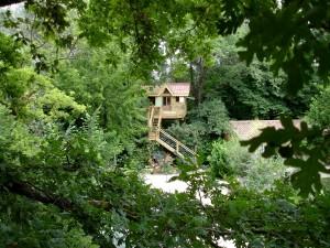 Dormir dans un arbre (Avignon)