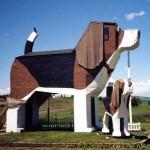 hotel-chien