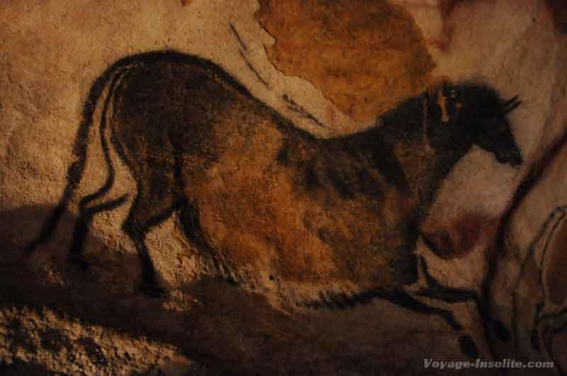 Perigord-lascaux-cheval