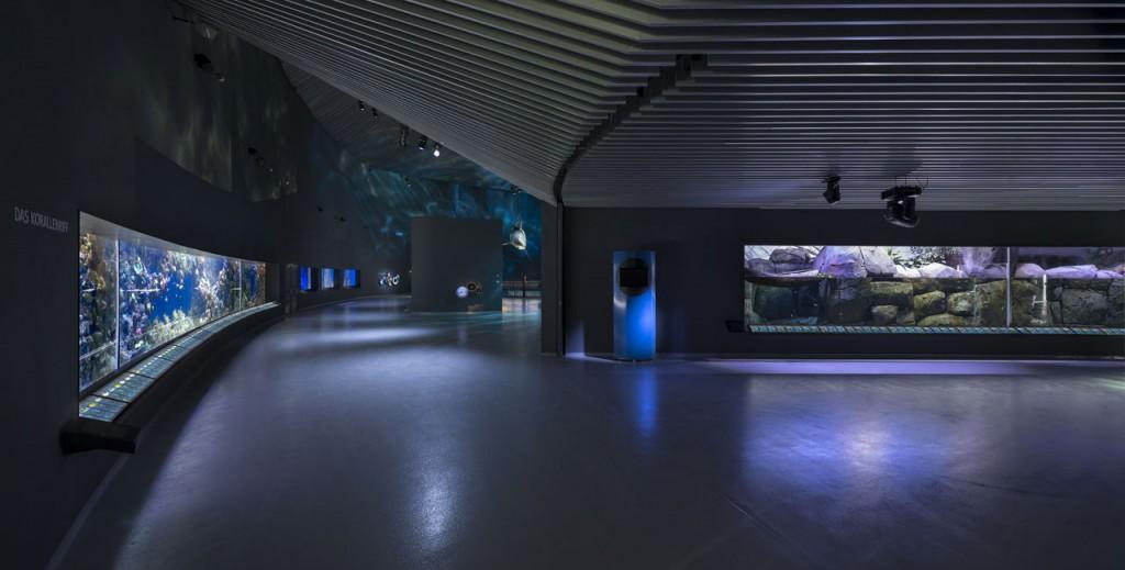 Blue-Planet-Aquarium