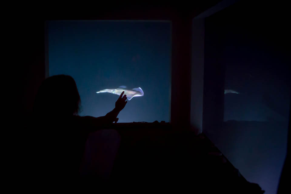 chambre_sous_leau_zanzibar_nuit