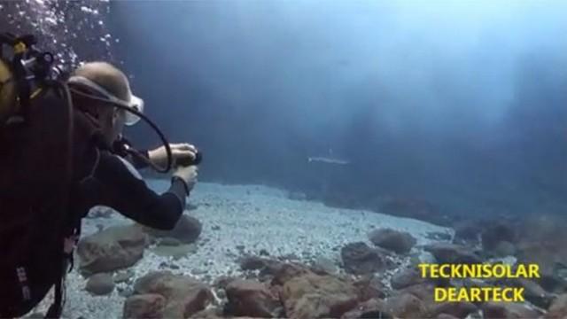 dearteck-anti-requin