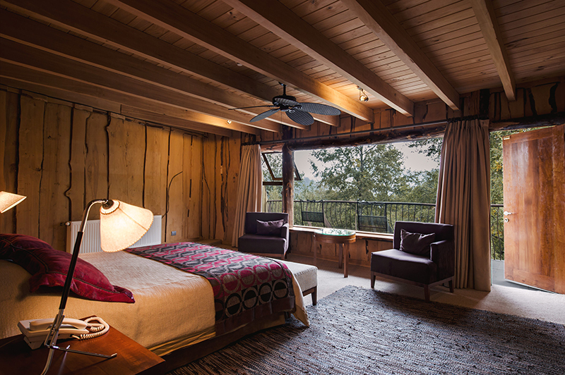 nothofagus_hotel_chambre