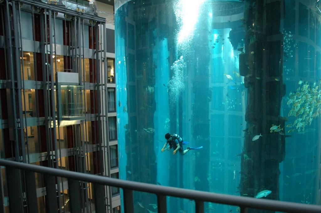 AquaDom2