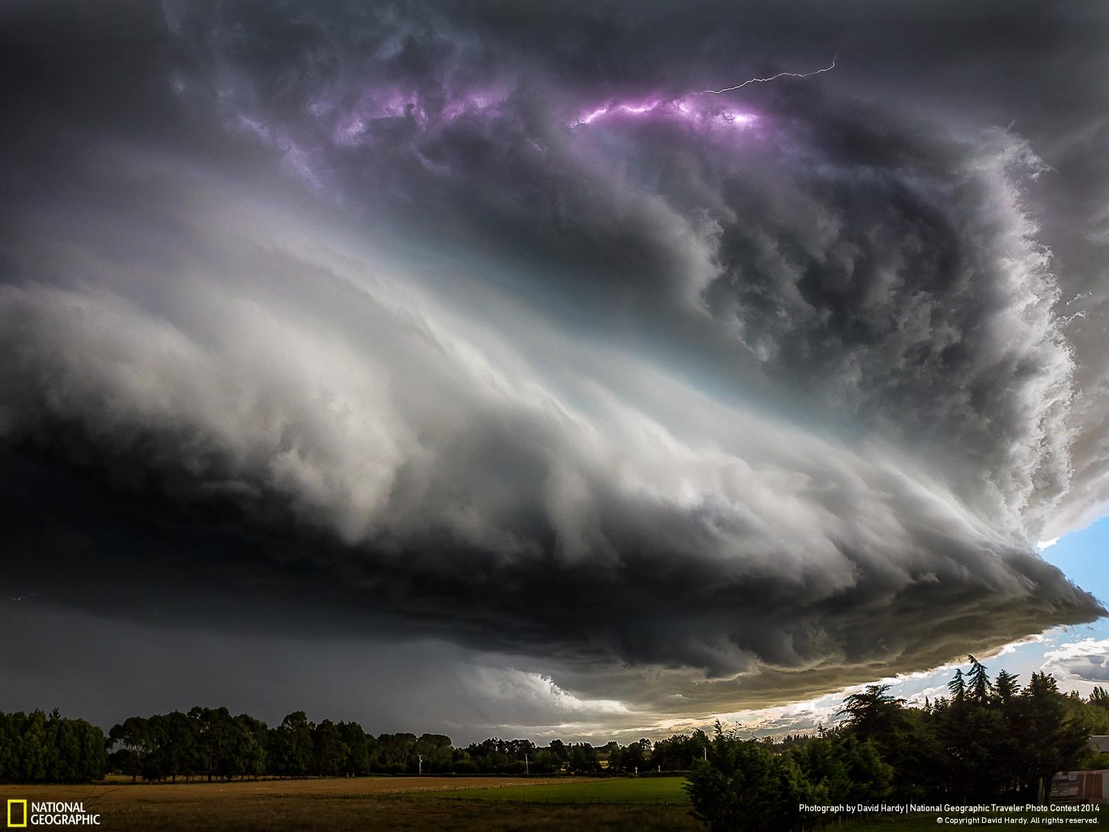 Les 10 photos les plus folles du concours National Geographic