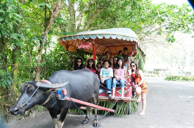 villa-escudero-coconut-plantation-day-trip-from-manila-in-manila-122865