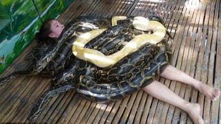 python-massage-main