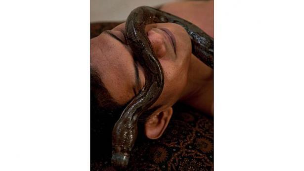 snake1112e