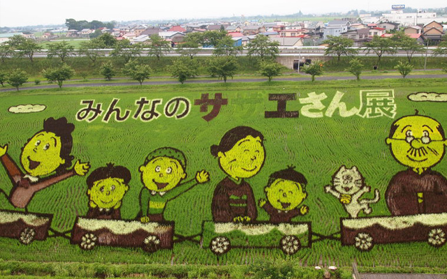 tambo_art_dessins_champs_riz_japon