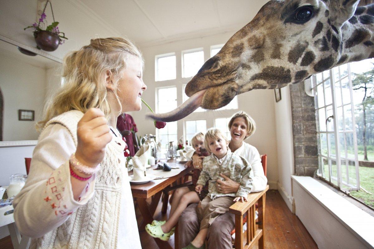 hotel_girafes_kenya5