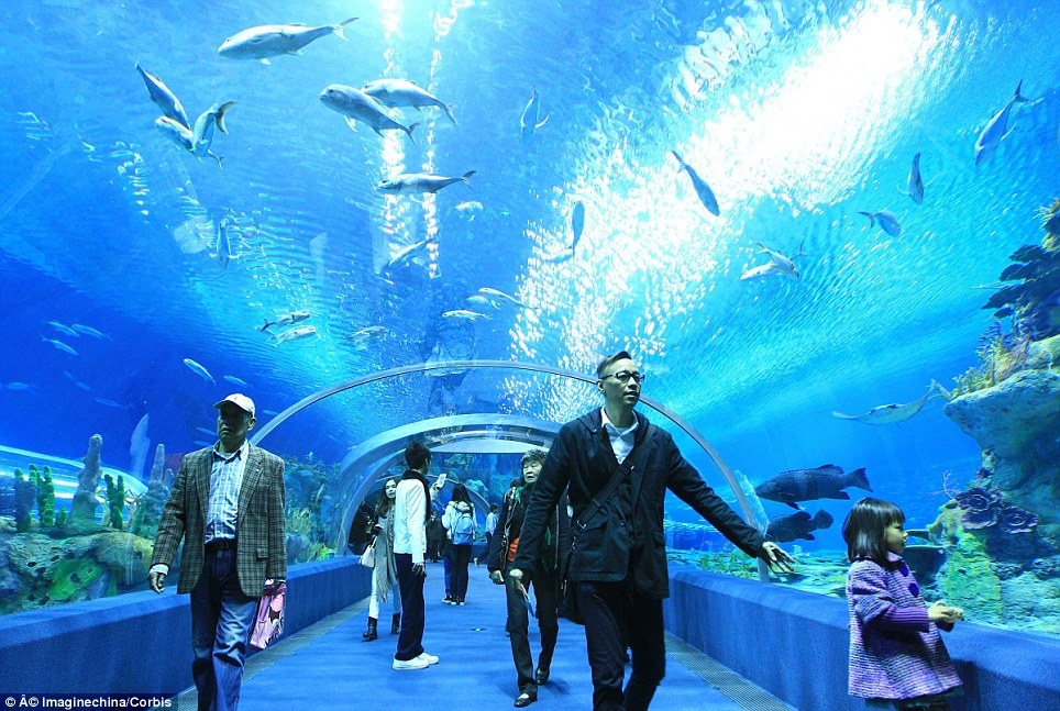 l'aquarium le plus grand au monde en Chine