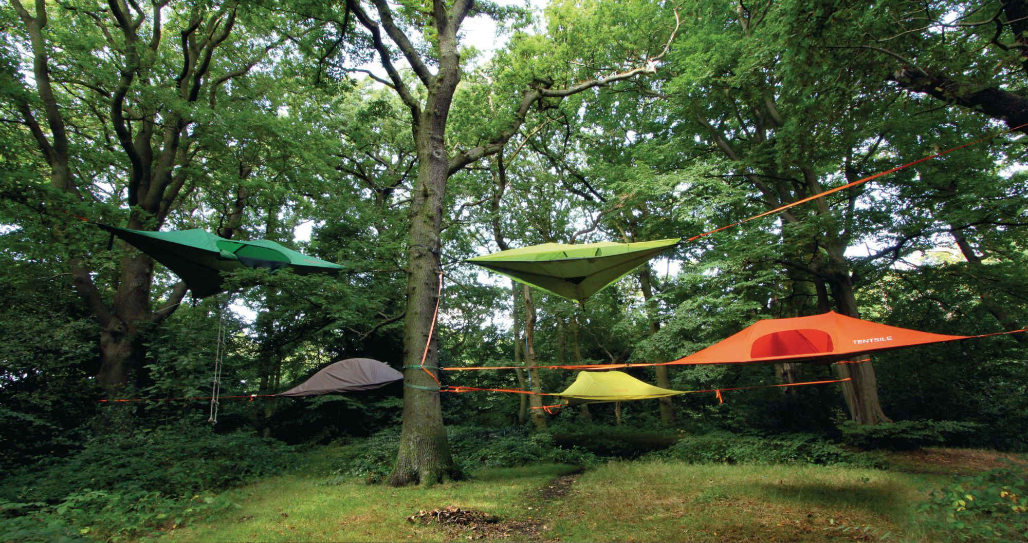 Hanging Hammock Chair From Tree