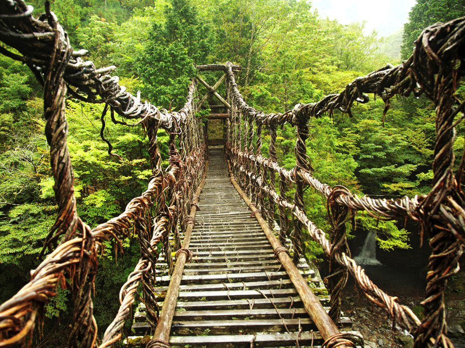Les ponts-de-vigne-de-la-Vallée-d'Iya