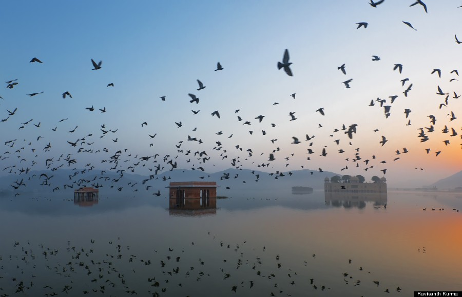 Jal Mahal during Sunrise