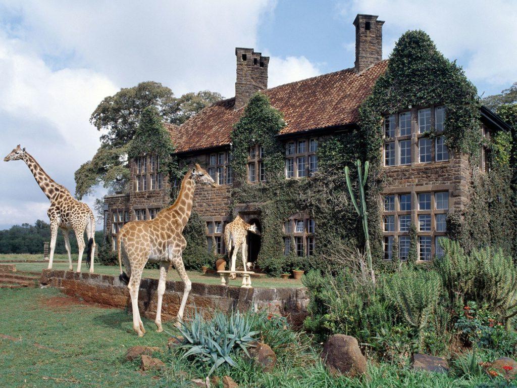 giraffe-manor-nairobi-kenya