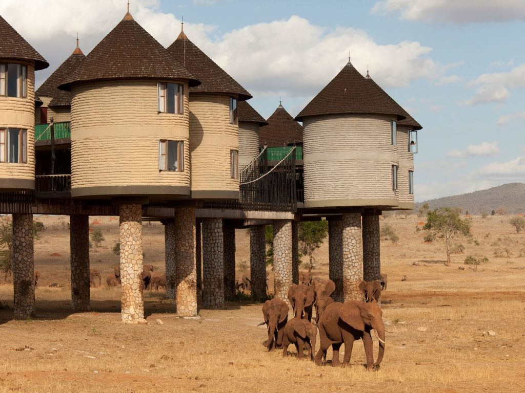 sarova-salt-lick-game-lodge-tsavo-kenya