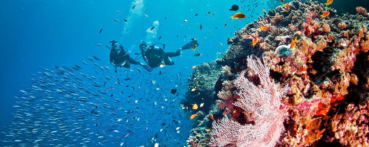 grande-barriere-corail-australie