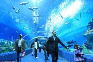 L'Aquarium le plus grand du monde en Chine