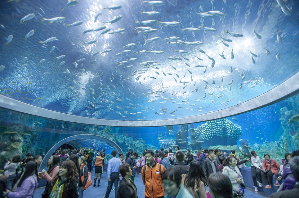 l'aquarium le plus grande au monde en Chine