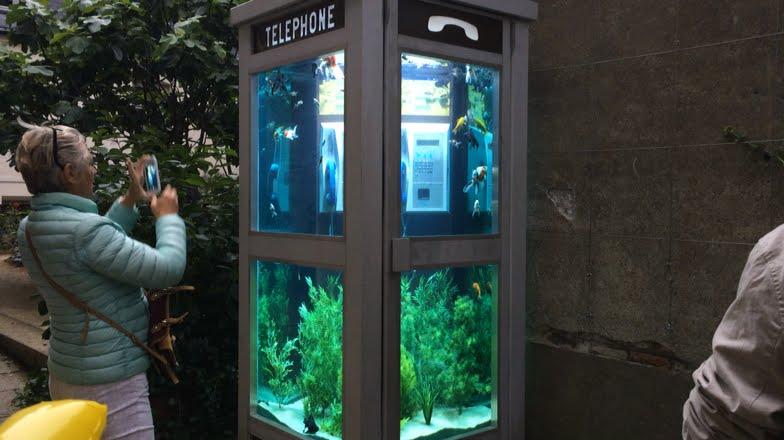 cabine aquarium à Nantes