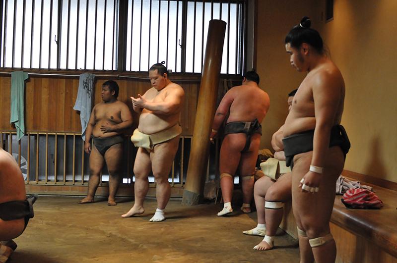 entrainement sumo