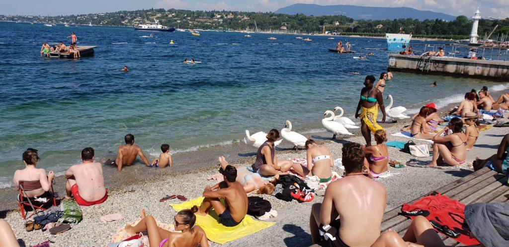 les bains Paquis à Genève