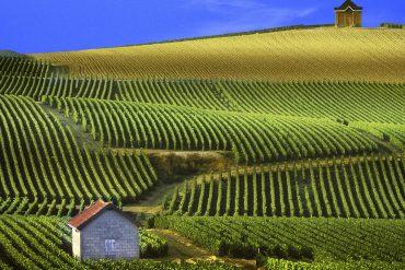 Reims et Champagne insolite