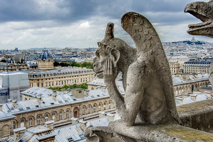 Gargouille de Notre-Dame