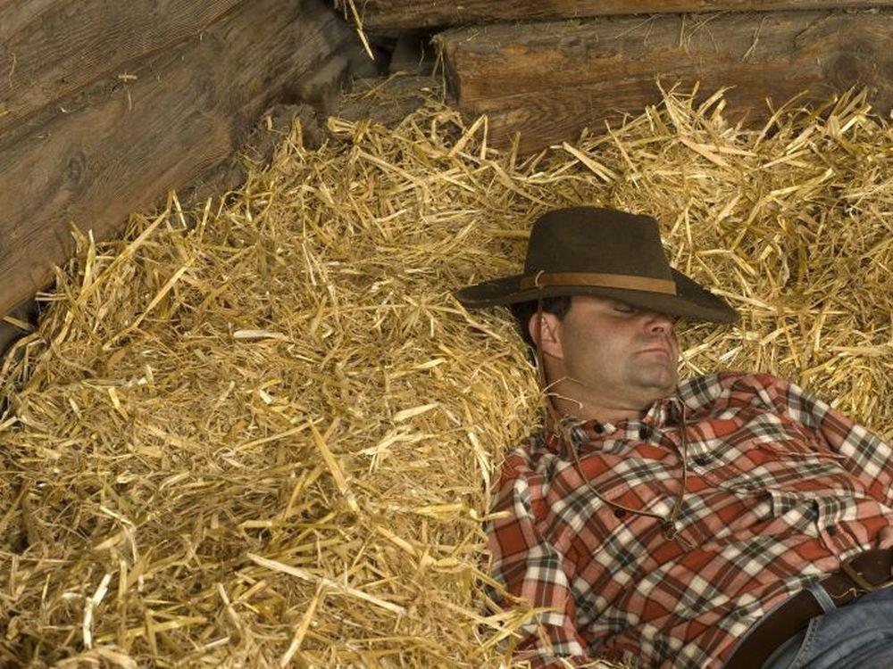 Dormir sur la paille une expérience totalement inédite