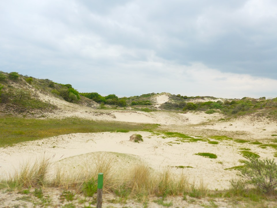 dunes-pays-bas