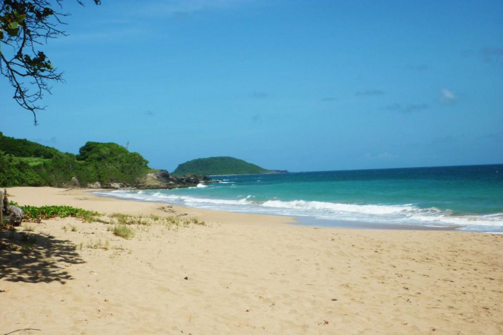Plage de Cluny Guadeloupe