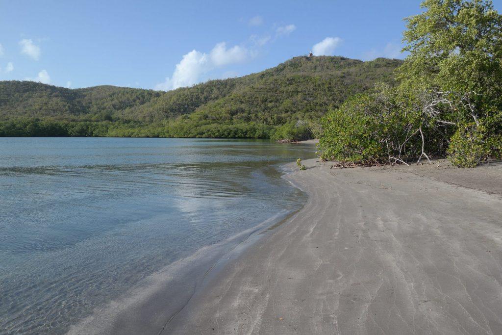 La Baie du trésor Martinique