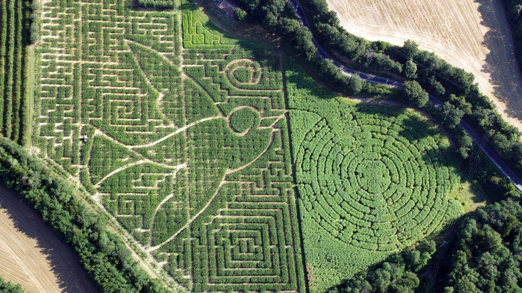 Motif du labyrinthe végétal vu d'en haut