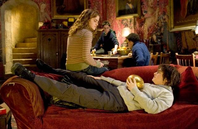 dame à la licorne Harry Potter Paris