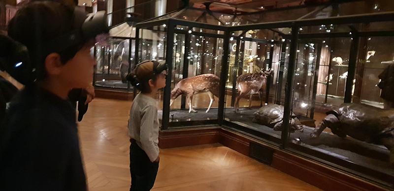 exposition revivre museum histoire naturelle
